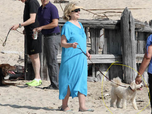 EXCLUSIVE TO INF. PLEASE CALL BEFORE USAGE. August 8, 2014: Former POTUS Bill Clinton and wife, former Secratary of State Hillary Rodham Clinton are seen enjoying a leisurely morning on the beach with their dogs today in the Hamptons, New York Mandatory Credit: Matt Agudo/INFphoto.com Ref.: infusny-251 sp EXCLUSIVE TO INF. PLEASE CALL BEFORE USAGE.