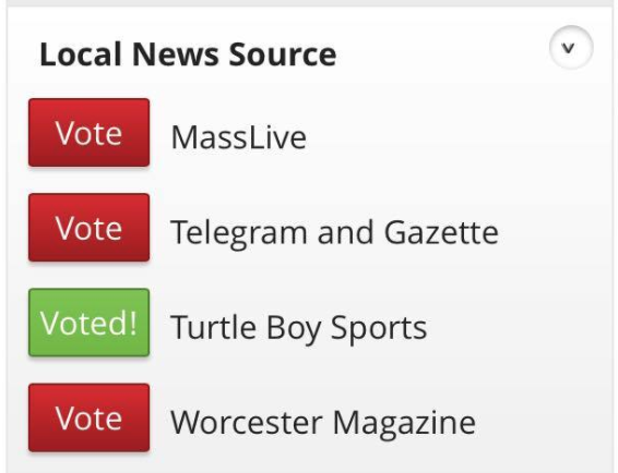 Click the pic to vote for Turtleboy Sports for best local news outlet.